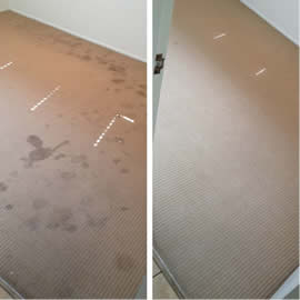Carpet Cleaning Gold Coast - Before and After
